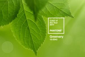greenery colore dell'anno 2017