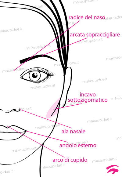 schema parti del viso